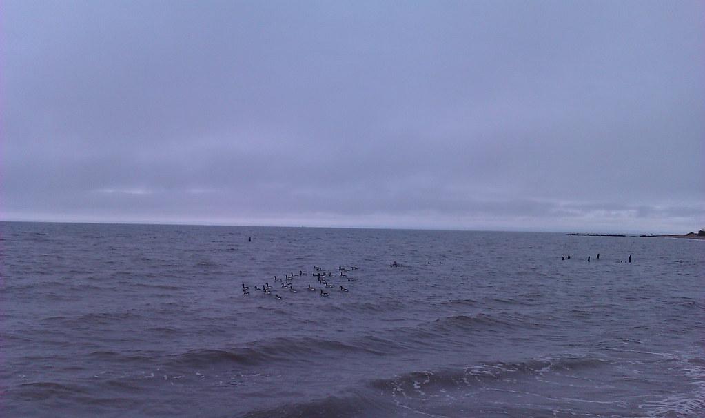 New Dorp Beach Staten Island
