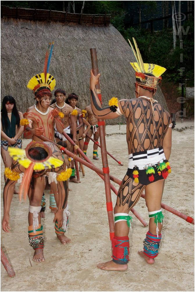 Xingu | Tumblr
