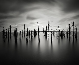 Drowned Souls | by Keith Aggett Photography