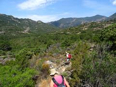 Sentier sous Punta Sant'Andria vers l'Osu : vue de la vallée