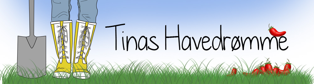 Tinas Havedrømme