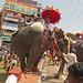 The Balancing Act, Thrissur Pooram '12