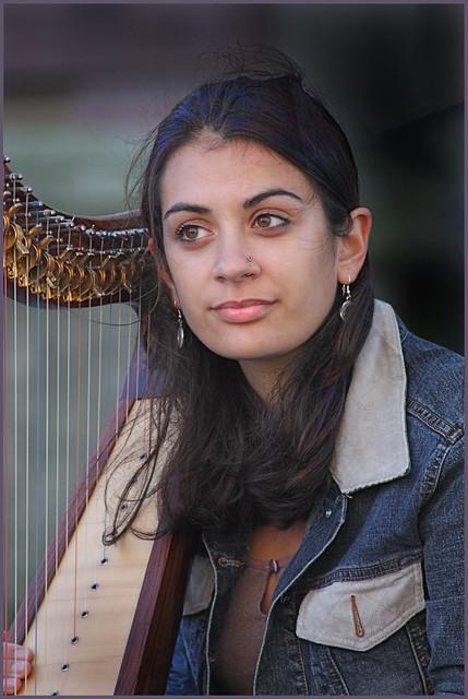 Xx Harp Travel Case