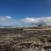 Bamburgh Castle from Harkness Rocks