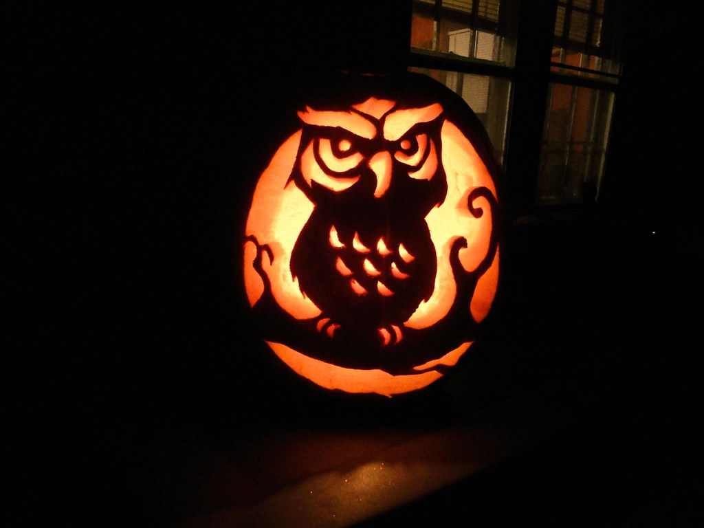 Owl pumpkin carving i hand drew this from a stencil