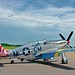 "Collings Foundation TP-51C Mustang Razorback ""Betty Jane"""