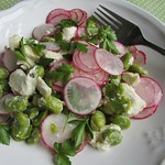 Broad beans, white cheese and hot radishes