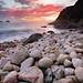 Cornish Evening Light