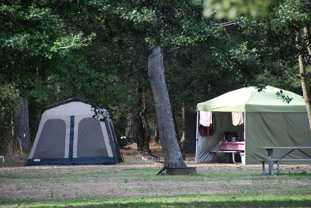 The best place to camp in Virginia - State Parks Blogs Kiptopeke State Park Campground Map on kiptopeke state park things to do, tyler state park campsite map, virginia campground map, kiptopeke state park fishing, virginia state parks map, d.l. bliss campground map, yankee springs campground map, washington state parks campgrounds map, kiptopeke beach, mackerricher state park camping map, williamsburg koa campground map, blue spring state park map, kiptopeke yurt, pismo state beach campground map, kiptopeke state park va, kiptopeke state park cabins, morro bay state park map, cheaha state park map, dl bliss state park map, blue ridge parkway campground map,