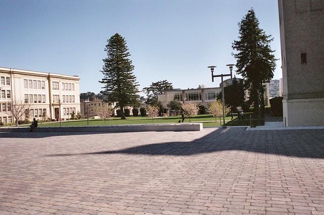 USF campus  Usf Campus