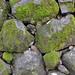 Matsue Castle: Stone Walls