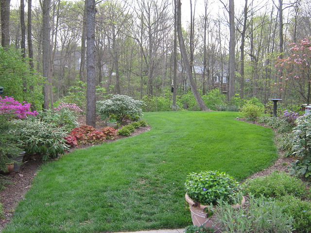 7604379572_442362d0b8_z Ideas For Wooded Backyard Landscape on ideas for muddy backyards, ideas for sloped backyards, ideas for sloping backyards,