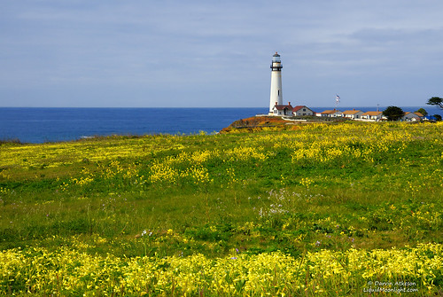 Springtime at Pigeon Point Lighthouse | by Darvin Atkeson
