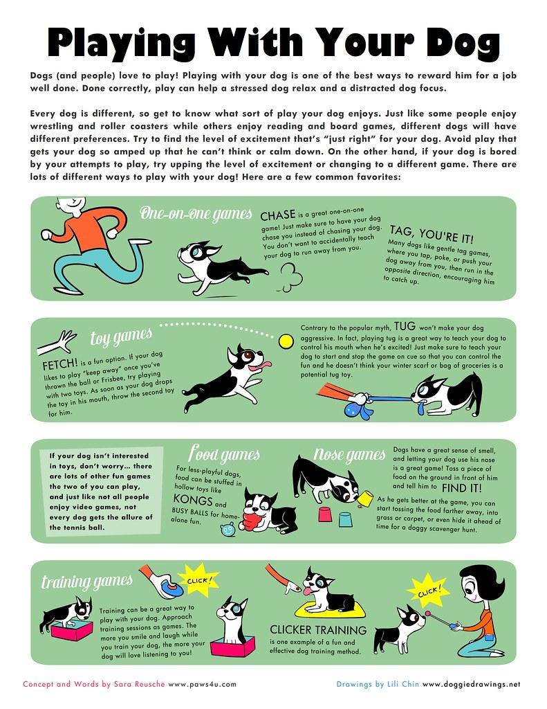 Dog Training Games For Kids