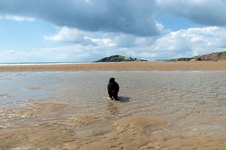 Bantham Beach | by Bustle & Sew