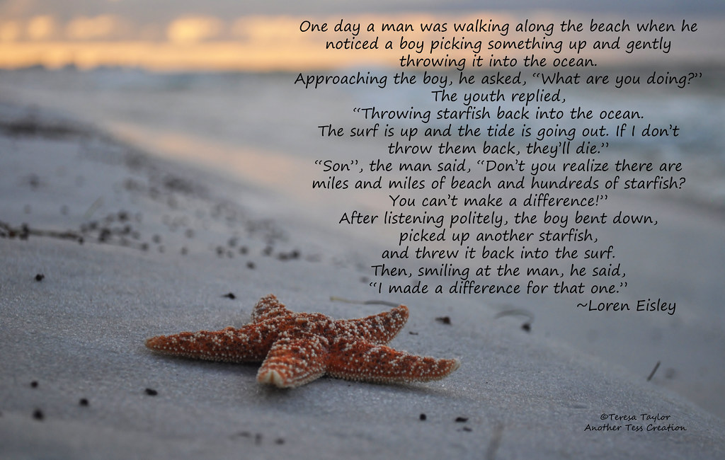 Image result for making a difference image with starfish