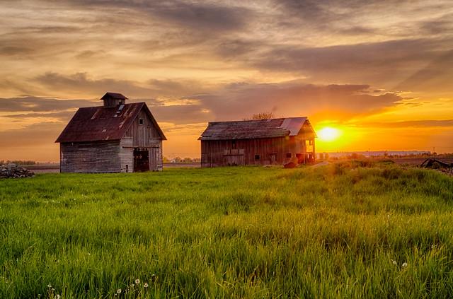 May Sunrise at the Barn and Crib