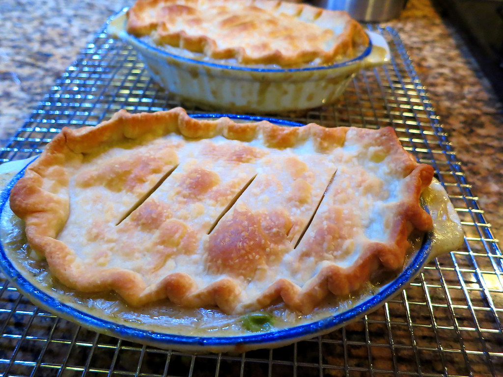I made a makeshift chicken pot pie once and used the Pillsbury pie crust from the freezer section the ones that are already in the pan. Not sure if the pie crust used in this recipe tastes the same as the one from the freezer section, but we found it a little on the sweet side.