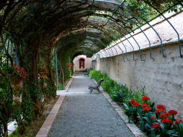Paseo de las buganvillas jard n de monforte de valencia for Jardines de monforte valencia