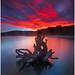 Manapouri Blaze