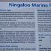 Ningaloo Marine Park