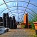 219/365 (+1) Greenhouse Effect