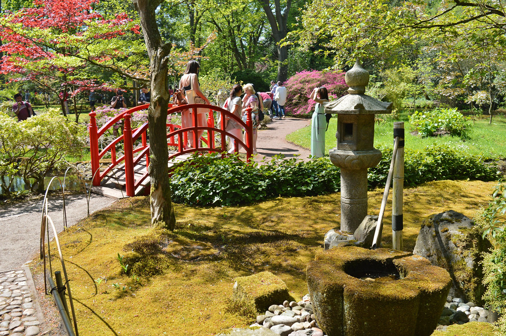 The Japanese Garden in the Hague