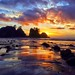 Point of the Arches Sunset, Olympic National Park
