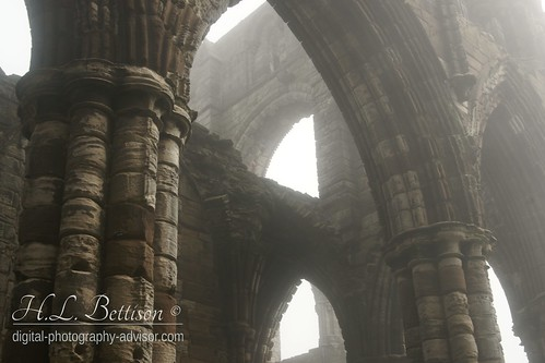 Whitby Abbey | by lovelyn b