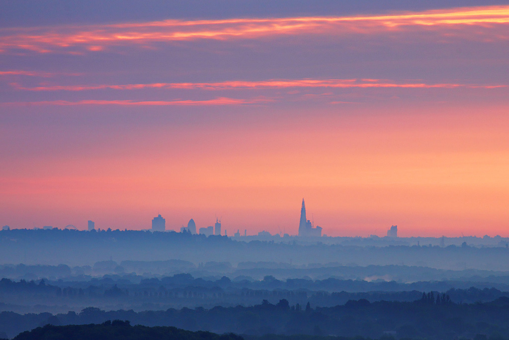 R Hogs London Skyline from Ho...