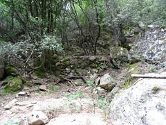 Carbonara en RD entre les confluences Carciara/Frassiccia et Carciara/Velacu