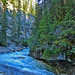 Johnston Canyon Rapids