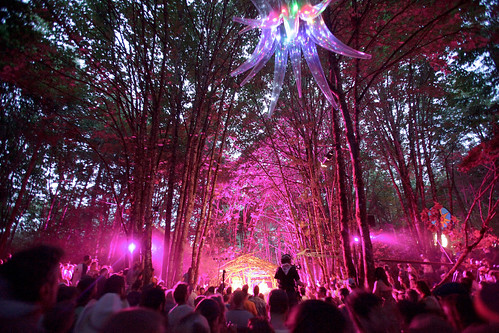 Pickathon Woods Stage | by traskb
