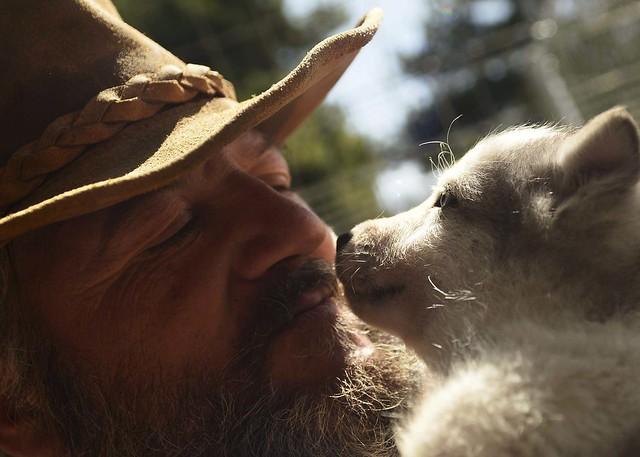 Fran Maruenda y sus perros de trineo