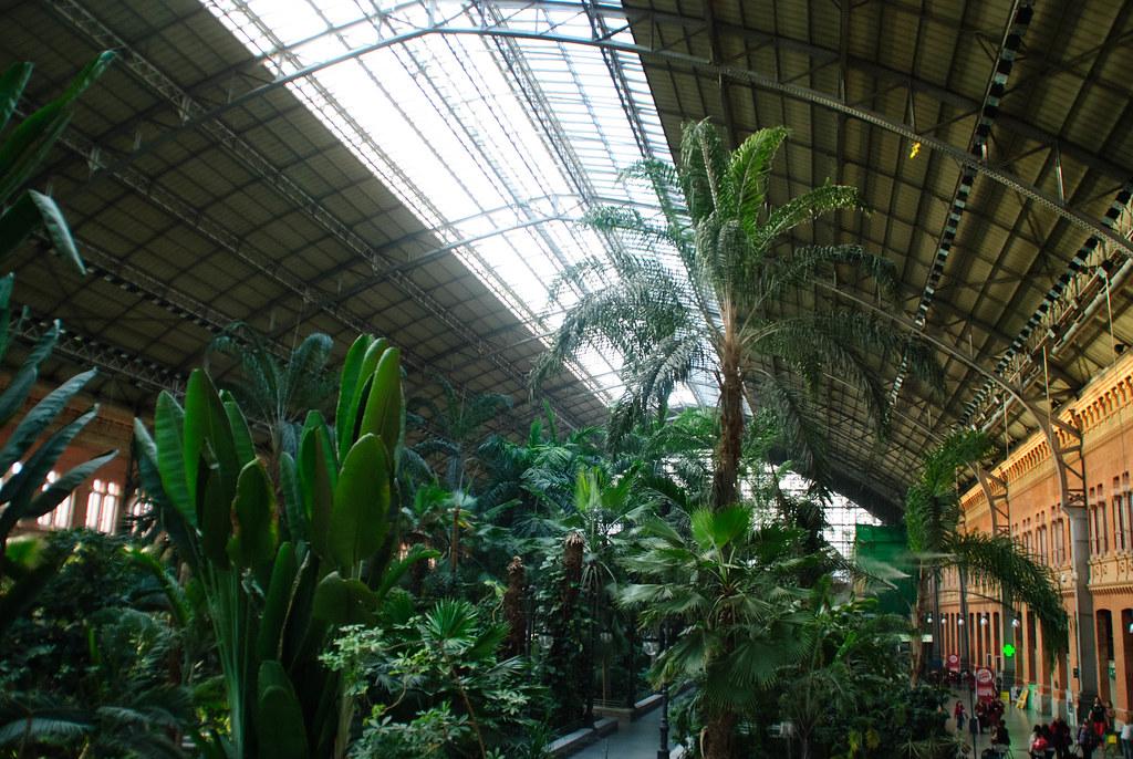 Jard n tropical de atocha henar lanchas flickr - Jardin tropical atocha ...