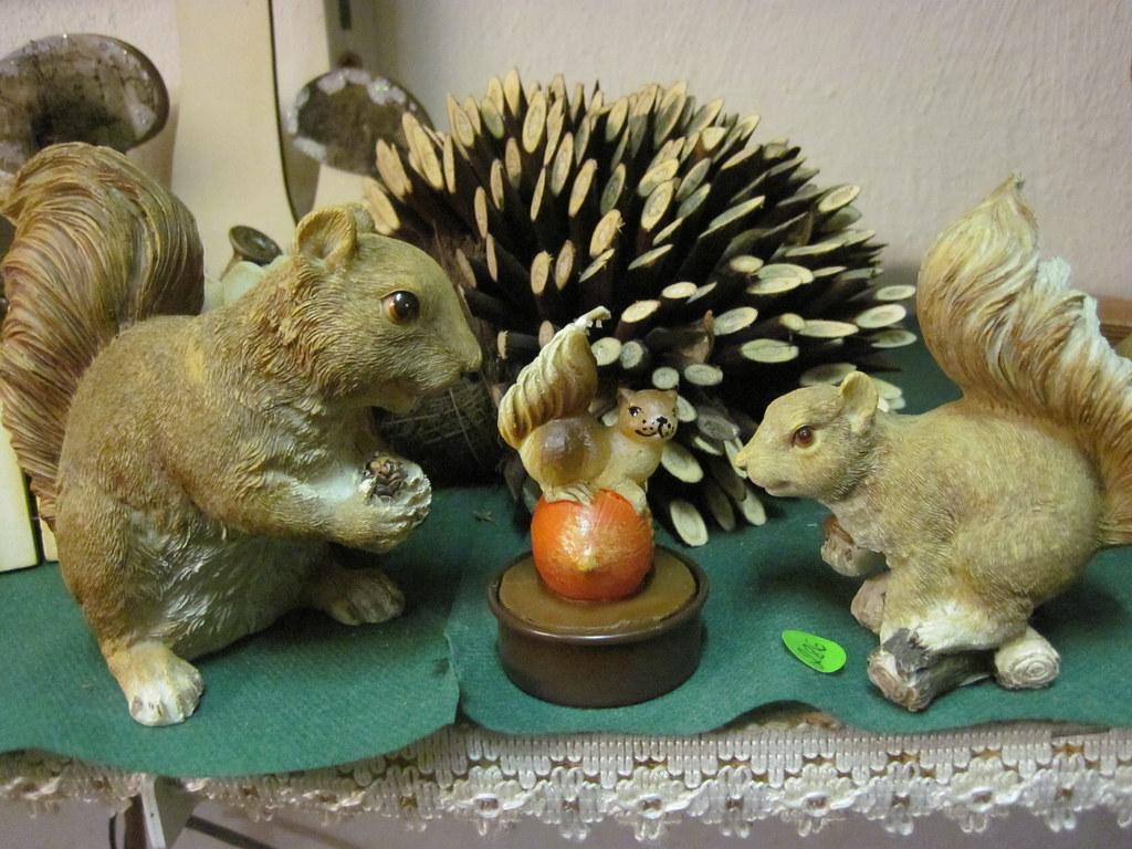 squirrel nativity scene miss clare flickr