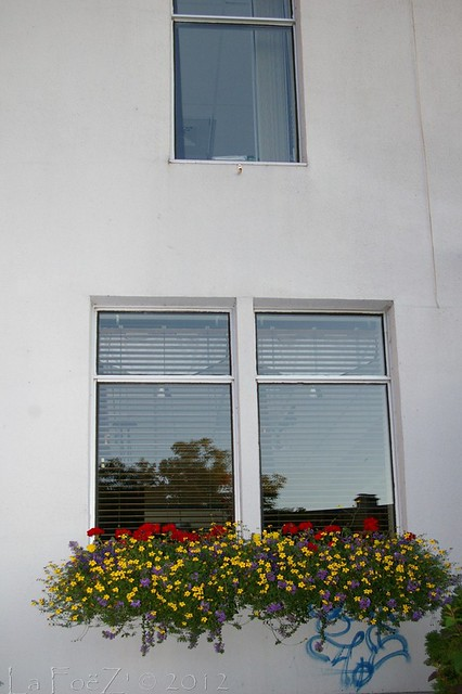 Photo for Fenetre windows 8