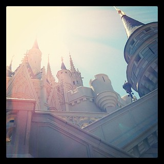 Castle Disney World | by Tanya Sharkey