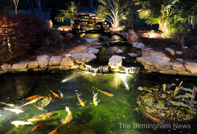 Submersible lighting underwater lighting placed in koi for Koi pond underwater lighting