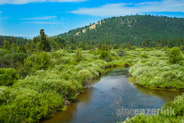 Lush green landscape with a shallow river running through ...