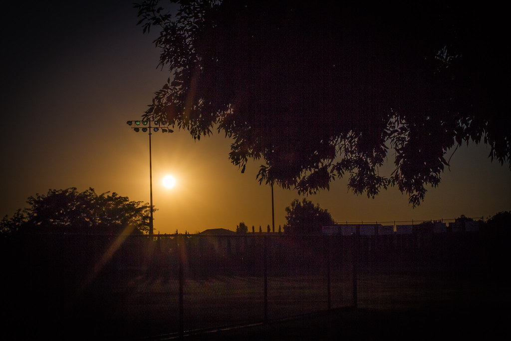 softball field sunset