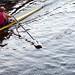 Rowin' rowin' rowin'