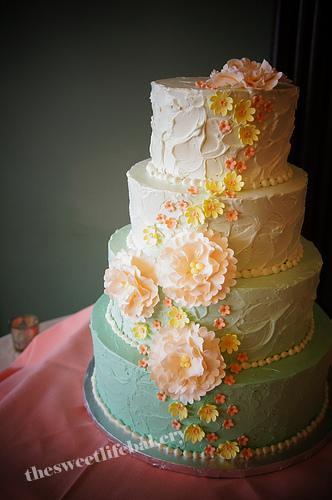 ombre tiffany blue wedding cake with sugar flower cascade flickr. Black Bedroom Furniture Sets. Home Design Ideas