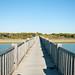 Puente en el parque de Los Toruños