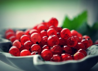 Red currant II | by monicakristiansen