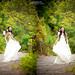 Ảnh cưới Tam Đảo ( JA Studio - 11E Thụy Khuê )