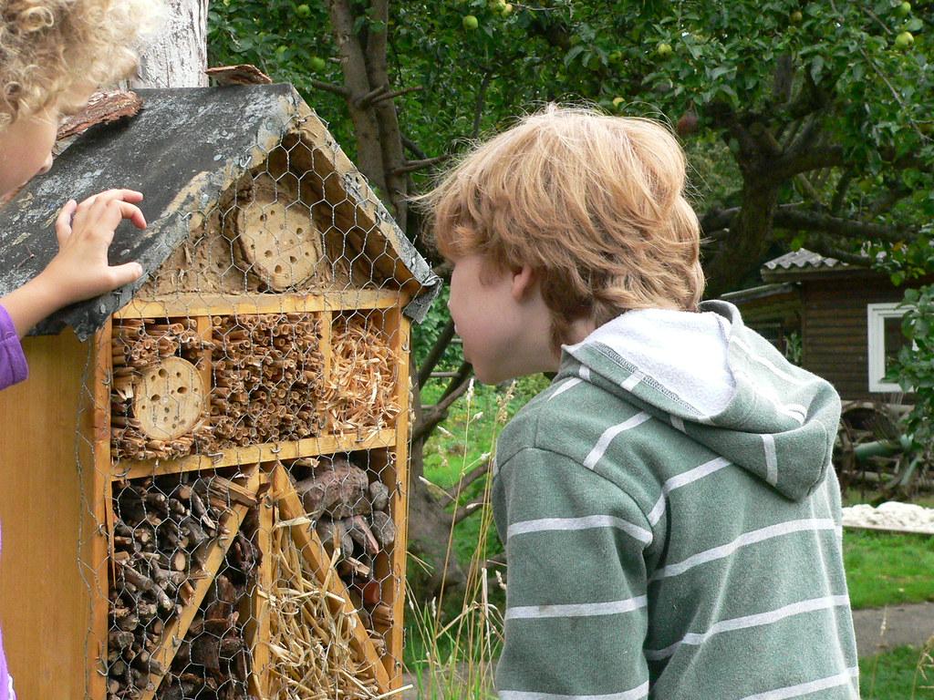fotowettbewerb wildbienenhotel 147 eingereicht vom. Black Bedroom Furniture Sets. Home Design Ideas