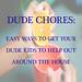 dude chores