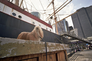 south street seaport | by Charley Lhasa