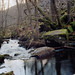 Hasselblad 500C – C – KodakEktar100 – Stones & Stream